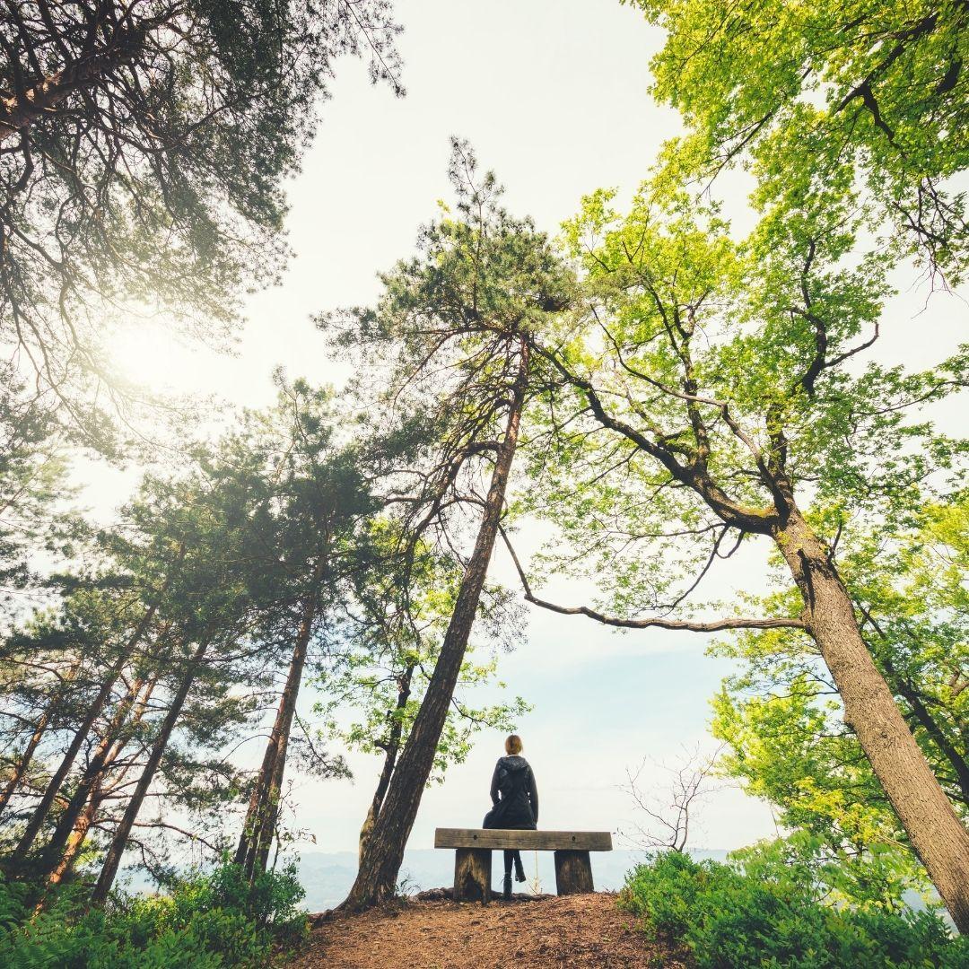 40cb045eae-mindfulness-trekking.jpg